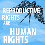 reproductive human rightssmall